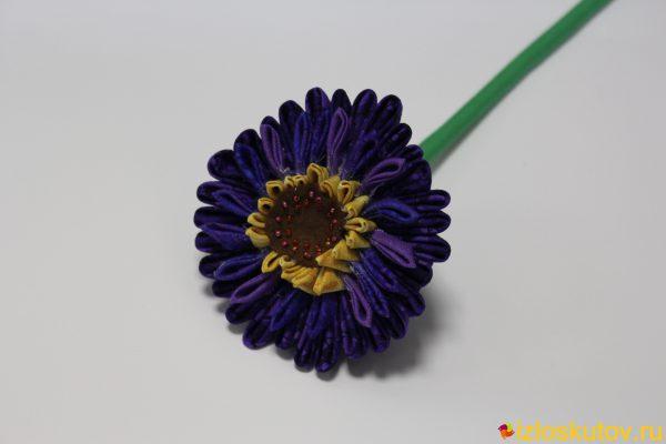 Гербера темно-фиолетовая № 536